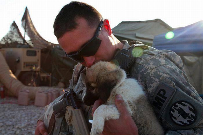 Żołnierze i zwierzaki 26