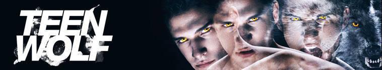 Teen Wolf S04E09 HDTV XviD-AFG
