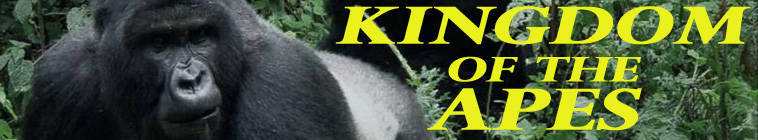 Kingdom Of The Apes S01E01 Clash Of Kings 720p HDTV x264-CBFM