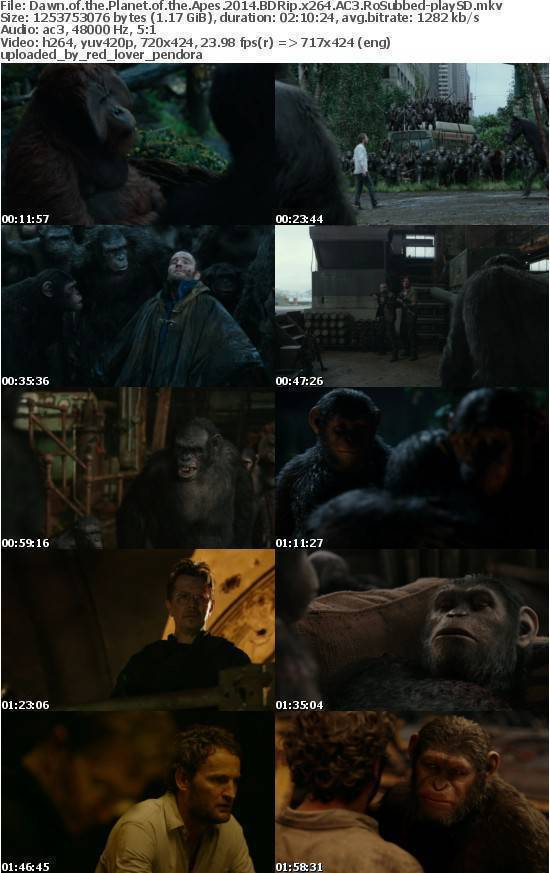 Dawn of the Planet of the Apes 2014 BDRip x264 AC3 RoSubbed-playSD