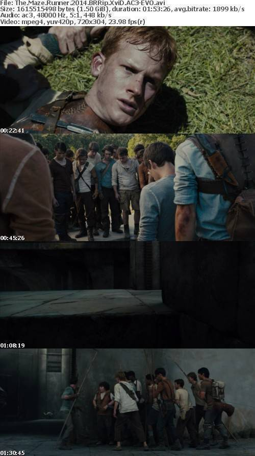 The Maze Runner 2014 BRRip XviD AC3-EVO