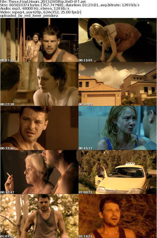 These Final Hours 2013 DVDRip XviD-iFT
