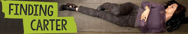 Finding Carter S02E09 INTERNAL 480p HDTV x264-mSD