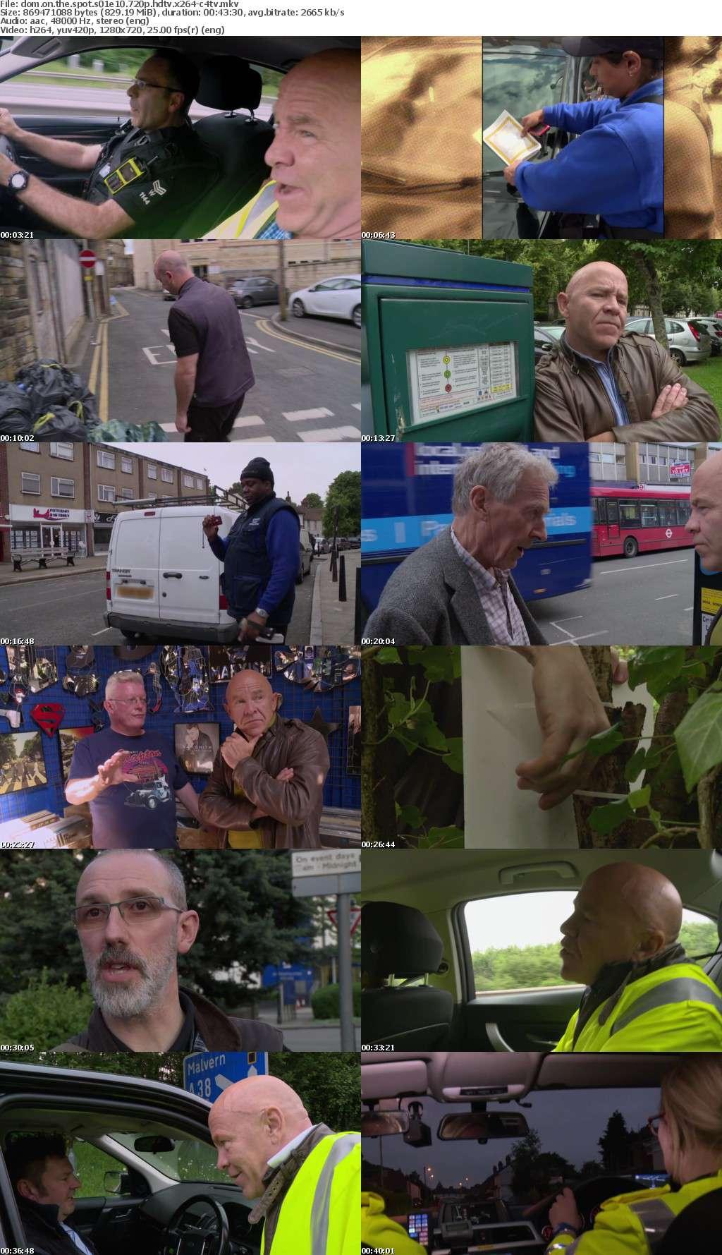 Dom On The Spot S01E10 720p HDTV x264-C4TV