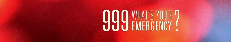 999 Whats Your Emergency S03E11 720p HEVC x265-MeGusta
