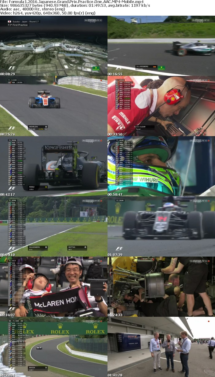 Formula1 2016 Japanese Grand Prix Practice One AAC-Mobile