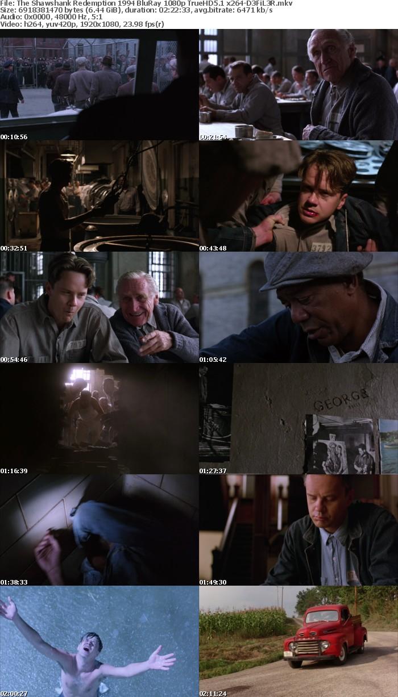 The Shawshank Redemption 1994 BluRay 1080p TrueHD5 1 x264-D3FiL3R