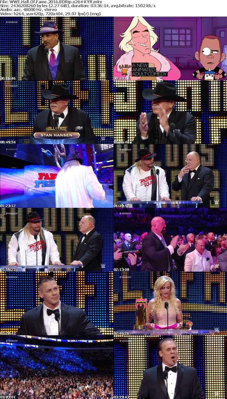 WWE Hall Of Fame 2016 BDRip x264-KYR