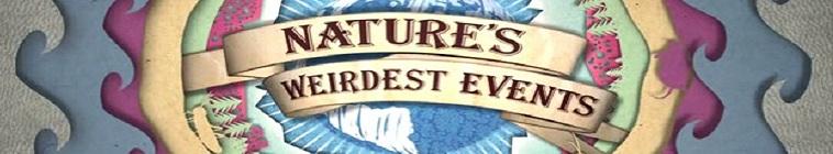 Natures Weirdest Events S05E03 WEB h264-ROFL