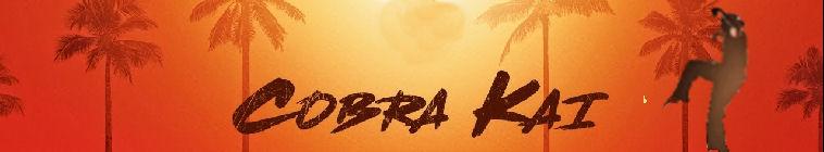 Cobra Kai S01E02 1080p WEB h264-CONVOY