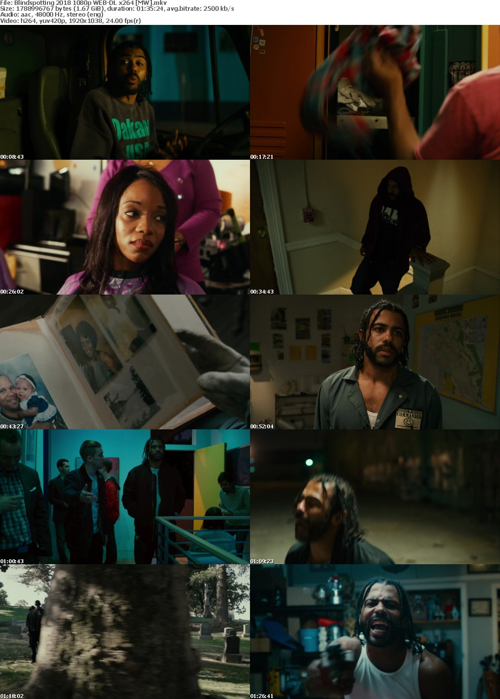 Blindspotting (2018) 1080p WEB-DL x264 MW