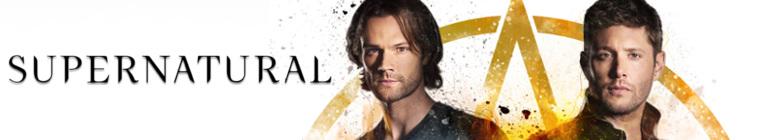 Supernatural S14E05 720p HDTV x264-SVA