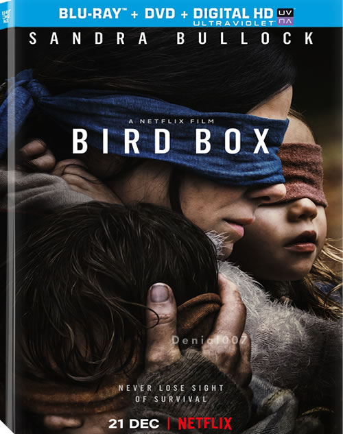 Bird Box (2018) 1080p WEBRip x265-4EVERDOWNS