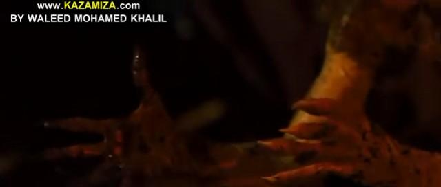 حصريا فيلم الرعب للرائع كيفن