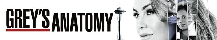 Greys Anatomy S14E05 MULTi 1080p HDTV x264-SRiZ