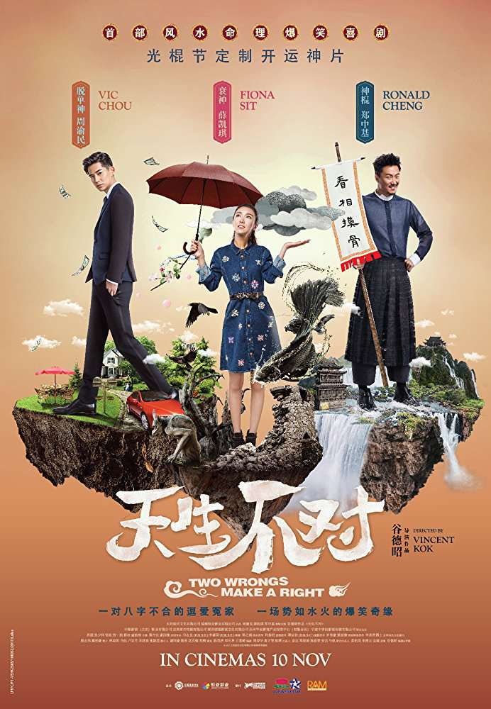 Two Wrongs Make a Right 2017 CHINESE 1080p BluRay x264-WiKi