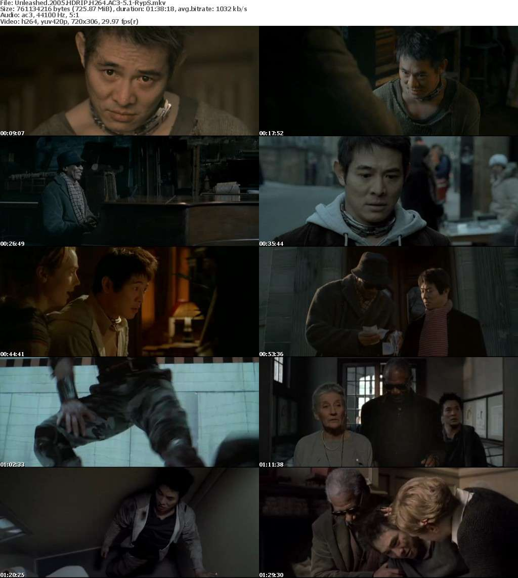 Unleashed 2005 HDRIP H264 AC3-5 1-RypS