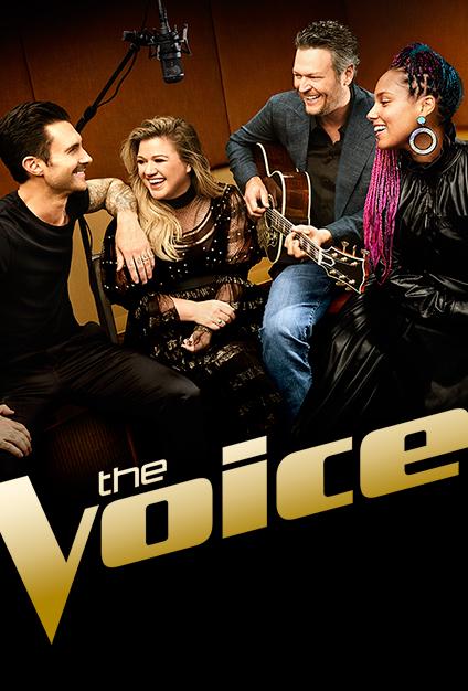 The Voice S14E29 WEB x264-TBS