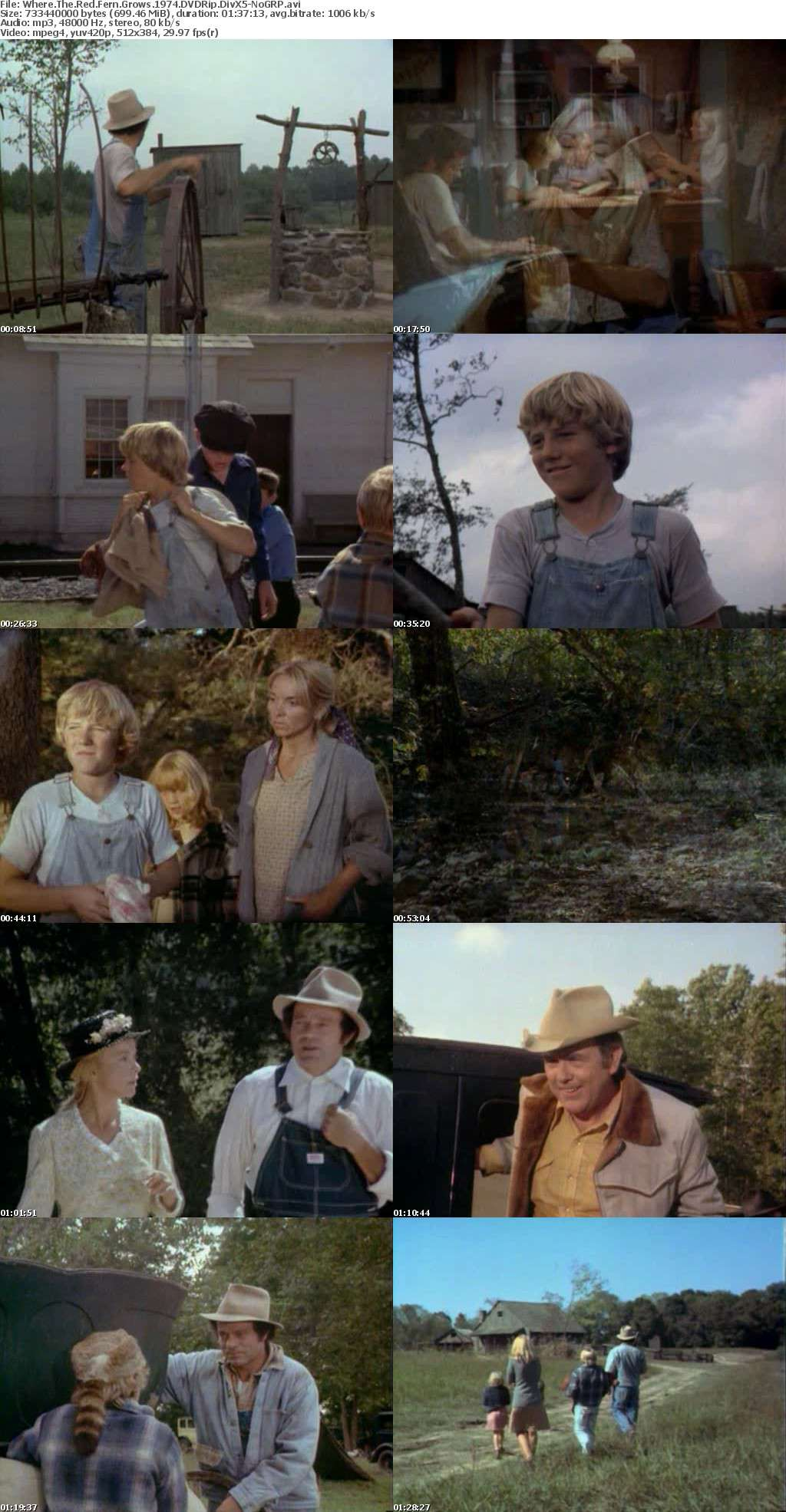 Where The Red Fern Grows 1974 DVDRip DivX5-NoGRP