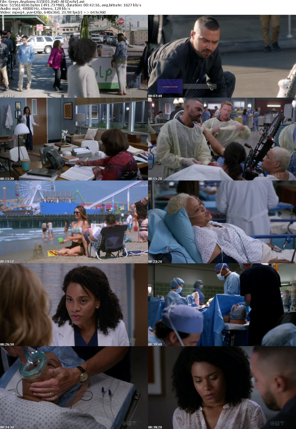Greys Anatomy S15E01 XviD-AFG