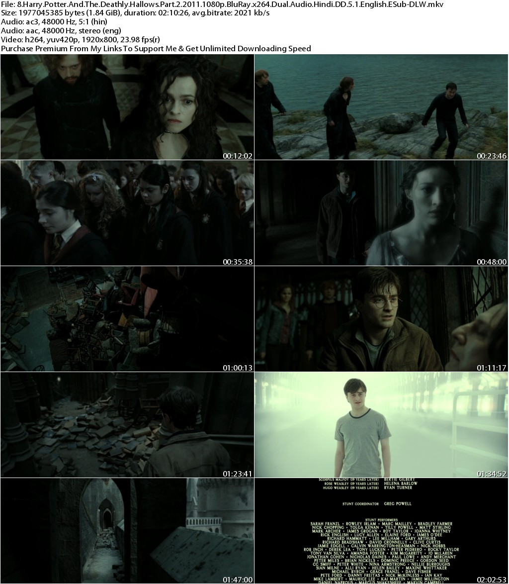 Harry Potter And The Deathly Hallows Part 2 (2011) 1080p BluRay x264 Dual Audio Hindi DD 5.1 English ESub-DLW