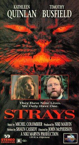 Strays 1991 DVDRip x264