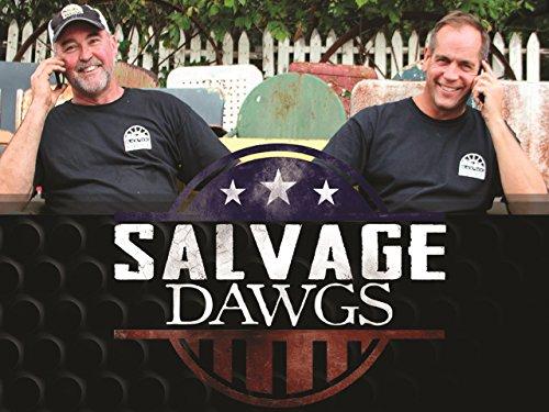 Salvage Dawgs S09E10 Roanoke Shopping Center WEB h264-CAFFEiNE