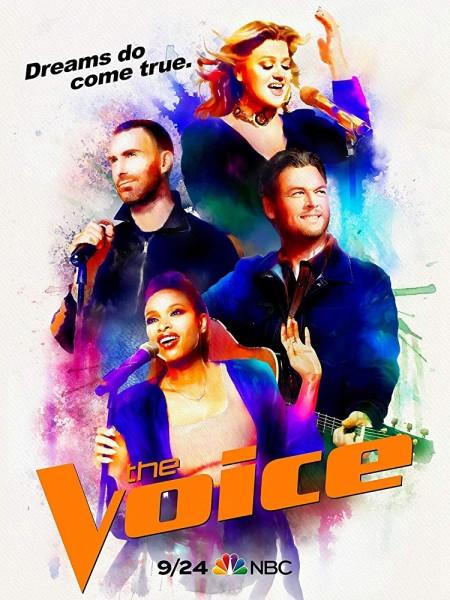 The Voice S15E23 480p x264-mSD