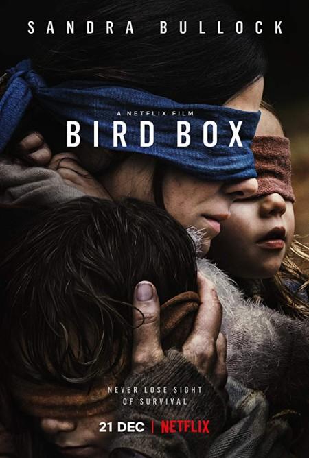 Bird Box 2018 HDRip AC3 X264-CMRG