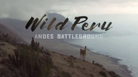 Wild Peru Andes Battleground S01E02 Welcome To The Jungle 720p HDTV x264-CBFM