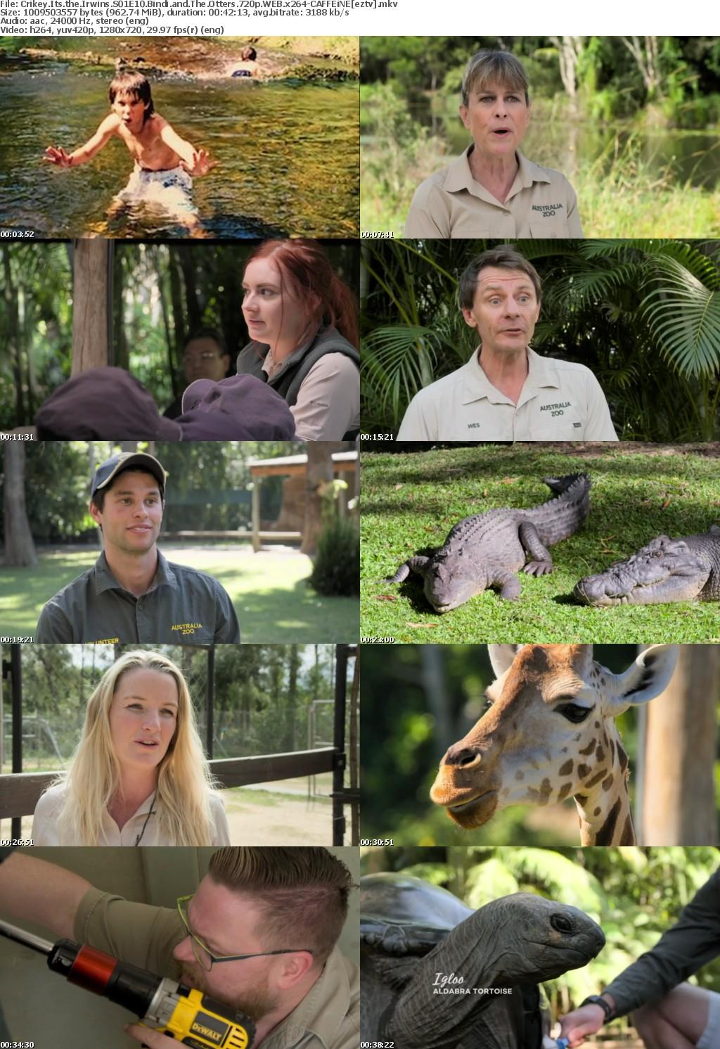Crikey Its the Irwins S01E10 Bindi and The Otters 720p WEB x264-CAFFEiNE