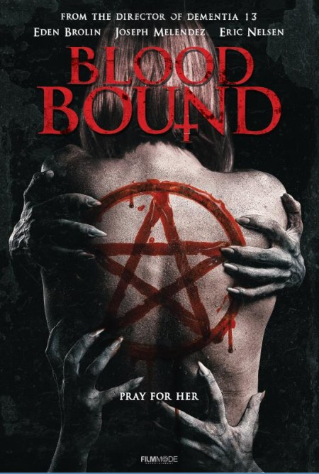 Blood Bound (2019) 1080p WEB-DL H264 AC3-EVO