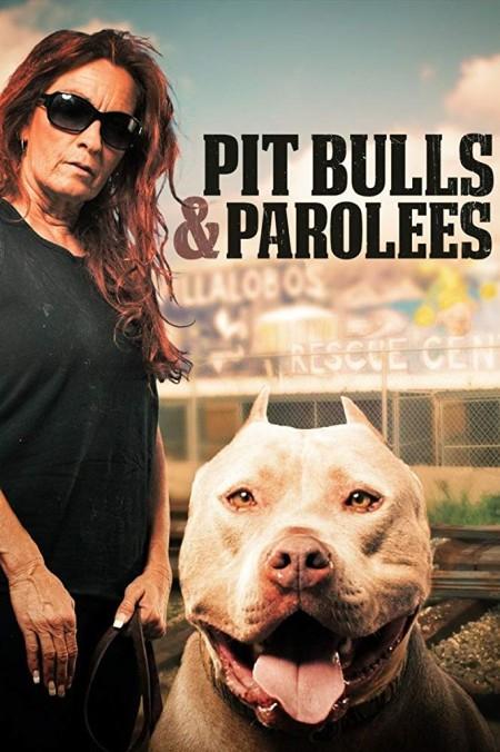 Pit Bulls and Parolees S13E02 Golden Girl WEB x264-CAFFEiNE