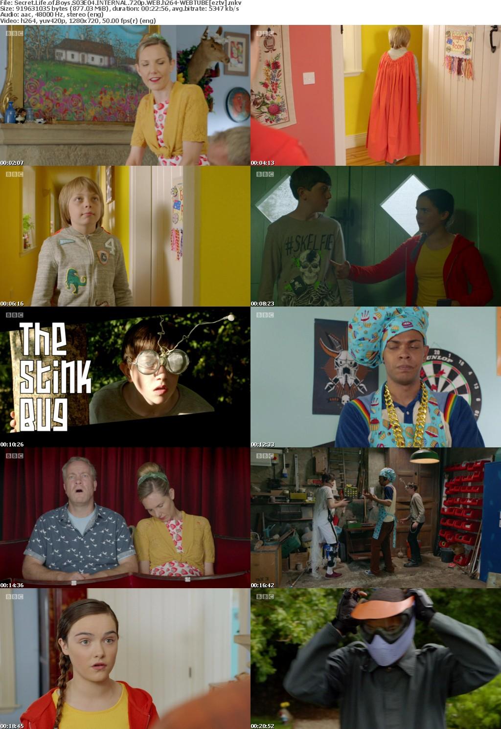 Secret Life of Boys S03E04 INTERNAL 720p WEB h264-WEBTUBE
