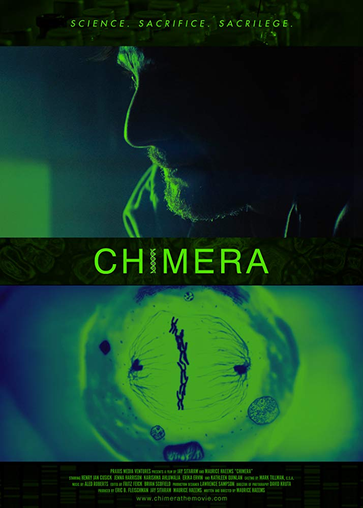 Chimera Strain 2019 HDRip XviD AC3-EVO