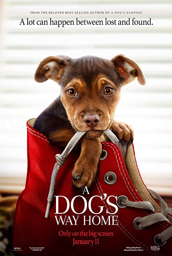 A Dogs Way Home 2019 HC WEBRip XviD MP3-STUTTERSHIT