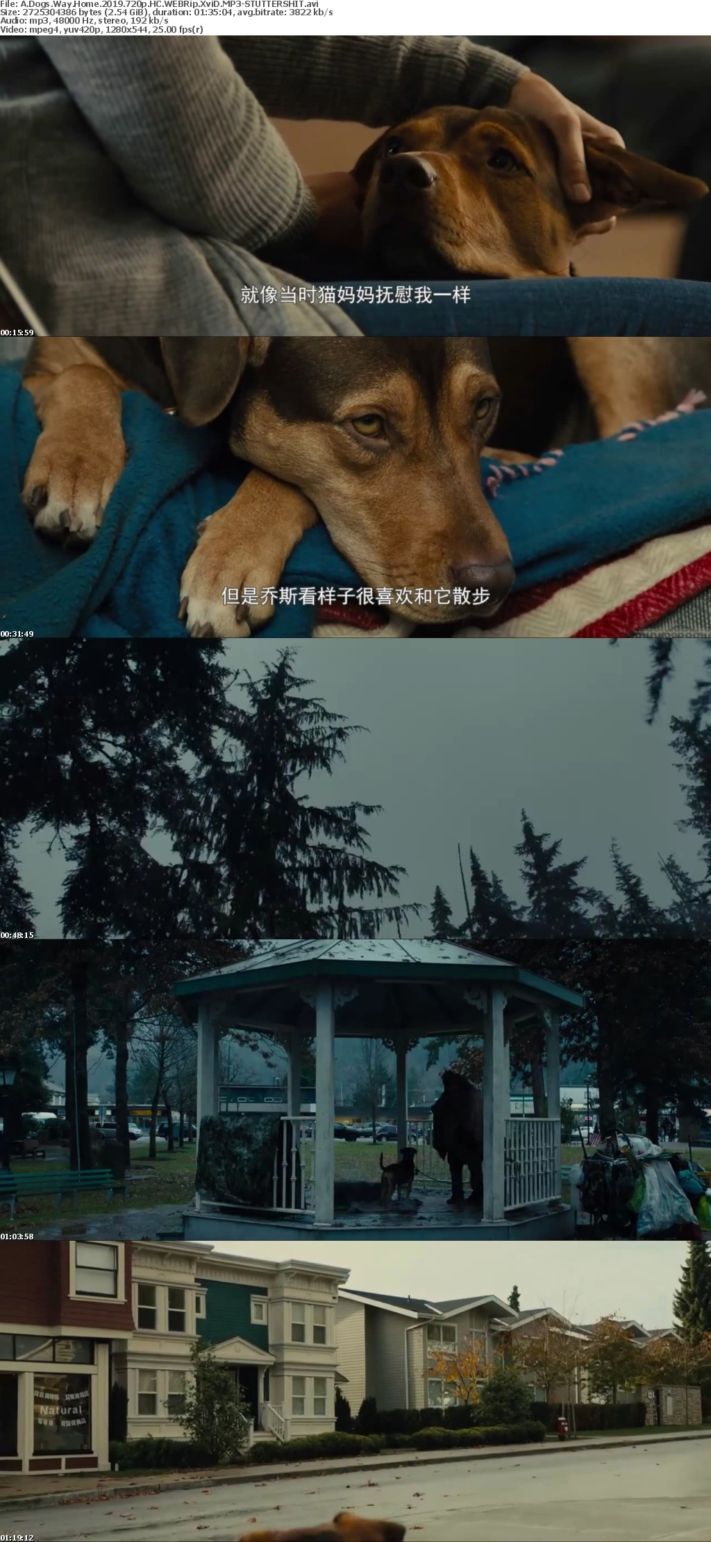 A Dogs Way Home 2019 720p HC WEBRip XviD MP3-STUTTERSHIT