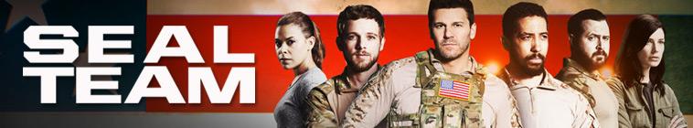 SEAL Team S02E14 HDTV x264-SVA