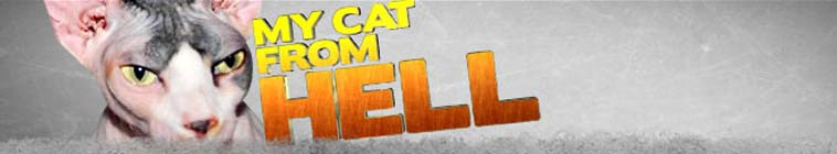 My Cat From Hell S03E03 Kitty Dearest WEB x264-GIMINI