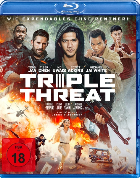 Triple Threat (2019) 1080p BluRay x264-YIFY
