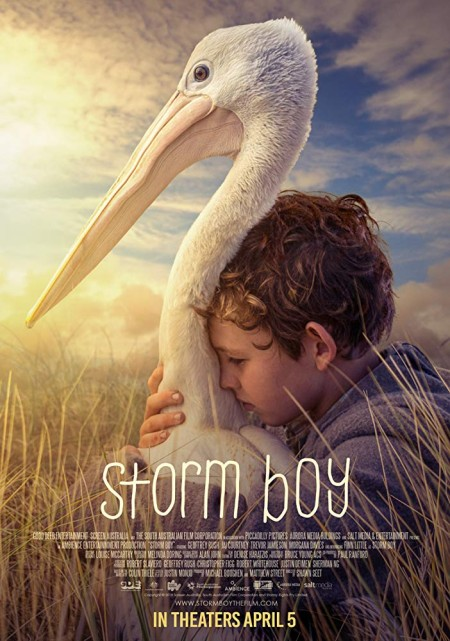 Storm Boy (2019) HDRip XviD AC3-EVO