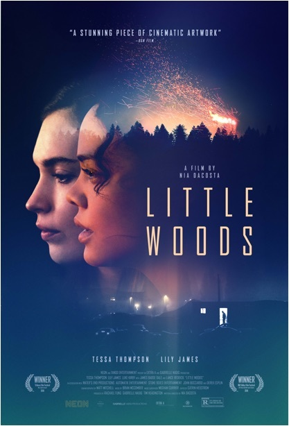 Little Woods (2019) HDRip XviD AC3-EVO