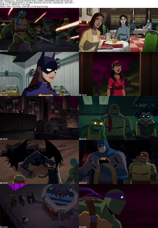 Batman vs Teenage Mutant Ninja Turtles (2019) BDRip XviD AC3-EVO