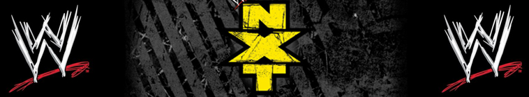 WWE NXT 2019 06 12 720p HEVC x265-MeGusta