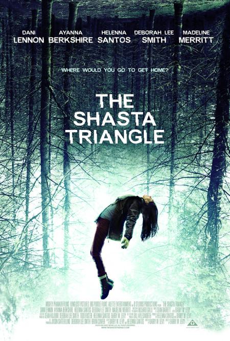 The Shasta Triangle (2019) 720p WEBRip 800MB x264-GalaxyRG