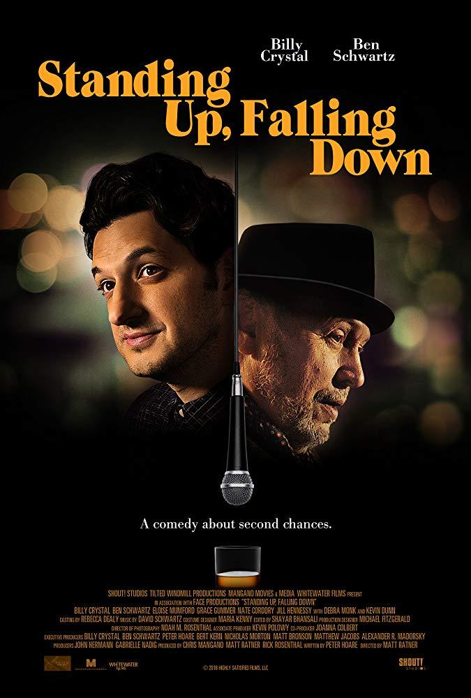 Standing Up Falling Down 2019 1080p AMZN WEBRip DDP5 1 x264-NTG