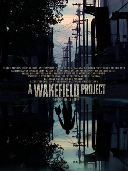A Wakefield Project (2019) 720p WEBRip 800MB x264-GalaxyRG