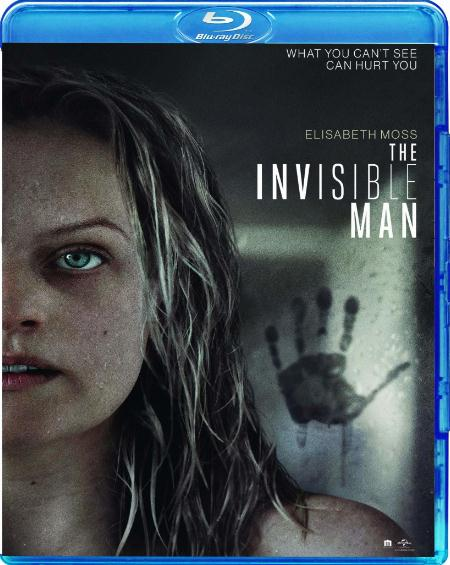 The Invisible Man (2020) 720p BluRay Hindi English x264 AAC 5.1 MSubs - LOKiHD - Telly