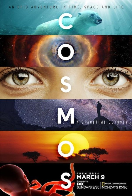 Cosmos Possible Worlds S01E06 480p x264-mSD