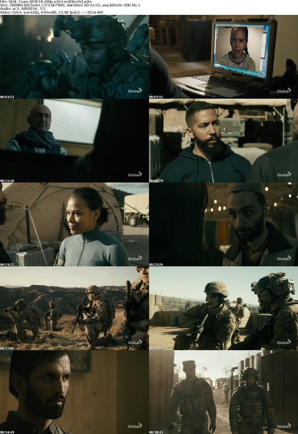SEAL Team S03E18 480p x264-mSD